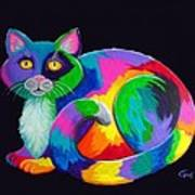 Rainbow Calico Poster by Nick Gustafson