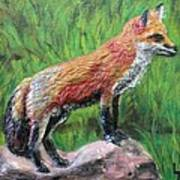 Red Fox Poster by Lorrie T Dunks