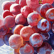 Red Grape Essence Poster by Sharon Freeman