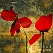 Red Petals Poster by Bernard Jaubert