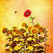 Red Sunflower Poster by Bob Orsillo