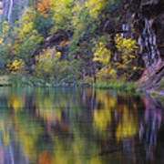 Reflected Fall Poster by Peter Coskun