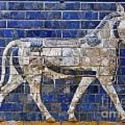 Relief From Ishtar Gate In Babylon Poster by Robert Preston
