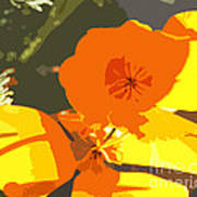 Retro Abstract Poppies Poster by Artist and Photographer Laura Wrede