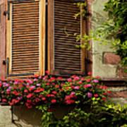 Riquewihr Window Poster by Brian Jannsen