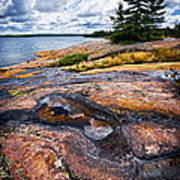 Rocky Shore Of Georgian Bay Poster by Elena Elisseeva
