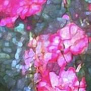 Rose 188 Poster by Pamela Cooper