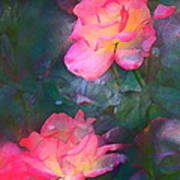 Rose 194 Poster by Pamela Cooper
