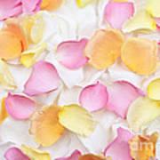 Rose Petals Background Poster by Elena Elisseeva