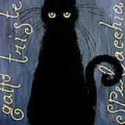 Sad And Ruffled Cat Poster by Donatella Muggianu
