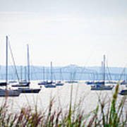 Sailboats At Rest Poster by Bill Cannon
