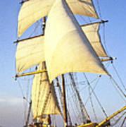 Sailing Ship Carribean Poster by Douglas Barnett