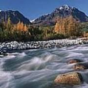 Scenic Of Granite Creek In Autumn Sc Poster by Calvin Hall