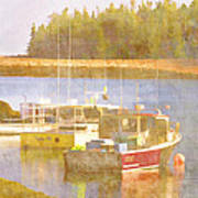 Schoodic Peninsula Maine Poster by Carol Leigh