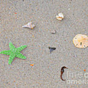 Sea Swag - Green Poster by Al Powell Photography USA