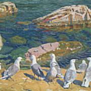 Seagulls Poster by Arkadij Aleksandrovic Rylov