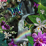 Secret Butterfly Poster by Alixandra Mullins