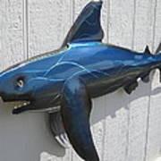 Shark Blue Bull Shark Poster by Robert Blackwell