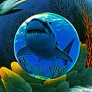 Shark World  Poster by Robin Moline