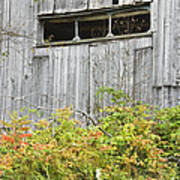 Side Of Barn In Fall Poster by Keith Webber Jr
