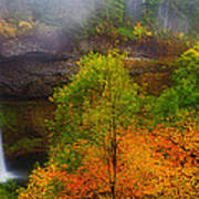 Silver Falls Pano Poster by Darren  White