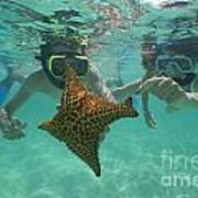 Snorkellers Holding A Four Legs Starfish Poster by Sami Sarkis