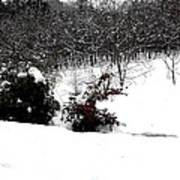 Snow Scene 6 Poster by Patrick J Murphy