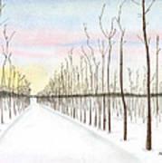 Snowy Lane Poster by Arlene Crafton