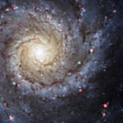Spiral Galaxy M74 Poster by Adam Romanowicz