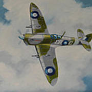 Spitfire Mk.viii Poster by Murray McLeod