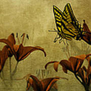 Spring Fever Poster by Diane Schuster