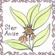Star Anise Poster by Christy Beckwith