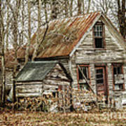 Still Standing Poster by Terry Rowe