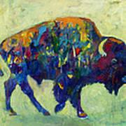 Still Wild Poster by Kate Dardine