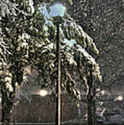 Street Lamp In The Snow Poster by Benanne Stiens