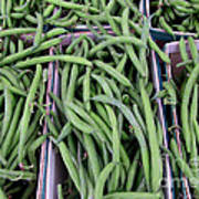Summer Green Beans Poster by Kathie McCurdy