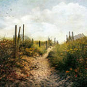 Summer Pathway Poster by John Rivera