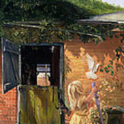 Summer Reflection Poster by Timothy  Easton