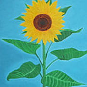 Sunflower Poster by Sven Fischer