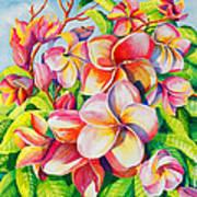 Sunlit Plumeria Poster by Janis Grau