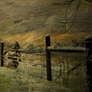 Sunrise Behind The Fence Poster by Kathy Jennings