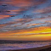 Sunset Flight Poster by Robert Jensen