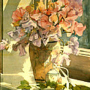 Sweetpea On The Windowsill Poster by Julia Rowntree