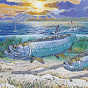 Tarpon Cut In0011 Poster by Carey Chen