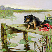 Terrier - Fishing Poster by Philip Eustace Stretton