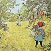 The Apple Harvest Poster by Carl Larsson