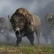 The Buffalo Vanguard Poster by Daniel Eskridge