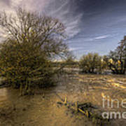 The Floods At Stoke Canon  Poster by Rob Hawkins