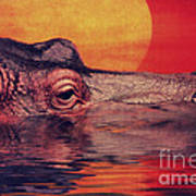 The Hippo Poster by Angela Doelling AD DESIGN Photo and PhotoArt