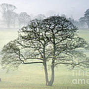 The Vale Of York From Crayke Poster by John Potter